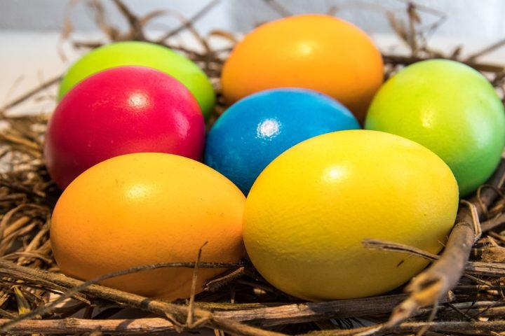 Der BVBB wünscht ein frohe Ostern